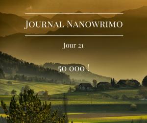 journal-nanowrimo-27