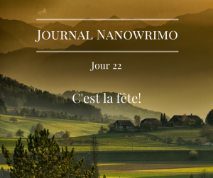 journal-nanowrimo-28