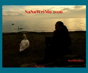 journal-nanowrimo-31