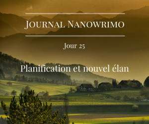 journal-nanowrimo-33