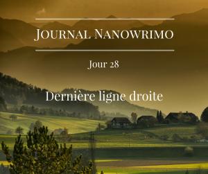 journal-nanowrimo-34