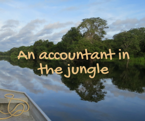 an-accountant-in-the-jungle